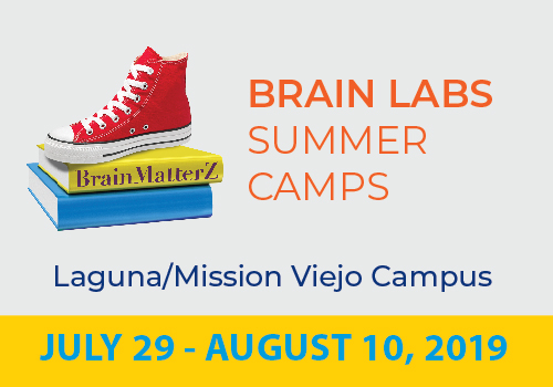 Brain Labs MV